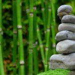 Śliczny ,a także estetyczny ogród to zasługa wielu godzin spędzonych  w jego zaciszu podczas pielegnacji.